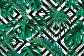 Vector Tropical Leaves Summer Seamless Pattern Abstract Geometric Background Template. Jungle Forest poster
