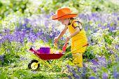 Kids In Bluebell Woodland. Child With Flowers, Garden Tools And Wheelbarrow. Boy Gardening. Children poster