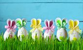 Easter Funny Bunny On Green Grass And Easter Eggs. Easter Background poster