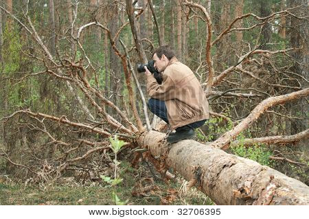 A Man Sitting On A Fallen Tree