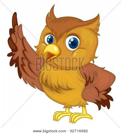 Illustration of an isolated owl
