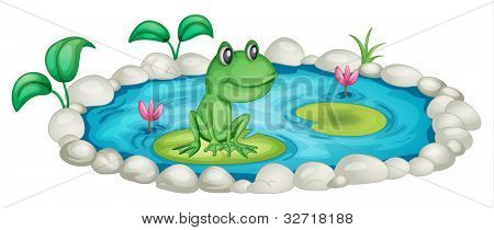 Frog in a pond illustration - EPS VECTOR format also available in my portfolio.