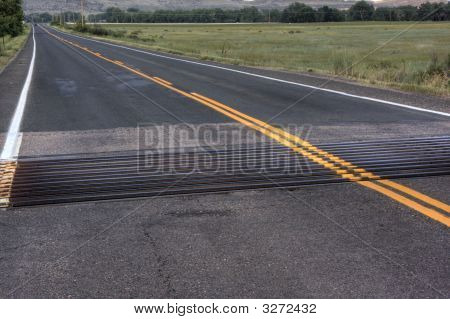 Cattle Guard Across Highway
