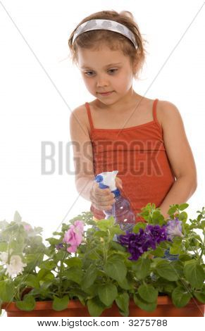 Young Girl Watering A Flower
