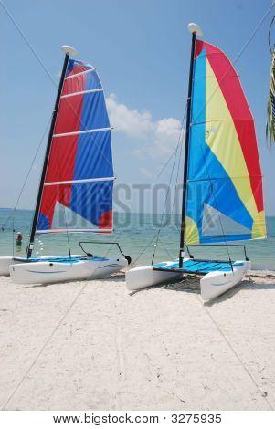 Catamaran Sail Boats