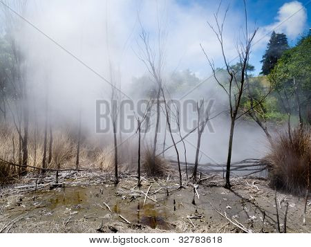 Steaming volcanic hot spring in Rotorua, N Zealand