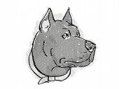 Retro Cartoon Style Drawing Of Head Of A Cane Corso, A Domestic Dog Or Canine Breed On Isolated Whit poster