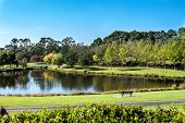 Garden Seat Overlooking Large Duck Pond In Community Parkland Filled With Green Trees And Walkways I poster