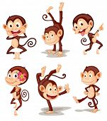 foto of pulling hair  - Illustraiton of comical monkey series - JPG