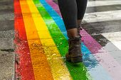 Legs Walking On Gay Rainbow Crosswalk. Female Legs Walking On Rainbow Crosswalk In Gay Parade. Gay P poster