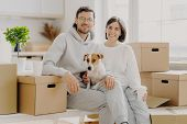 Positive Woman And Man Pose Near Stack Of Cardboard Boxes, Pose For Making Portrait With Dog, Reloca poster