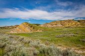 Theodore Roosevelt National Park North Unit poster