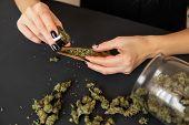 Close Up Of Marijuana Blunt With Grinder. Woman Preparing And Rolling Marijuana Cannabis Joint. Mari poster