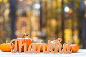 Thankful Message In Wooden Letters Thanksgiving Theme On A Fall Forest Background poster