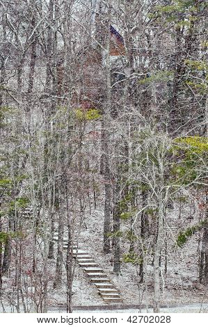 Steps up the hillsideat Fall Creek Falls State Park during snow fall