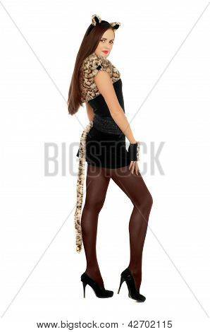 Young Woman Dressed As A Cat