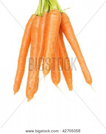 Bunch of carrots , isolated