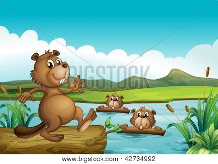 Abbildung Biber spielen im Fluss mit woods