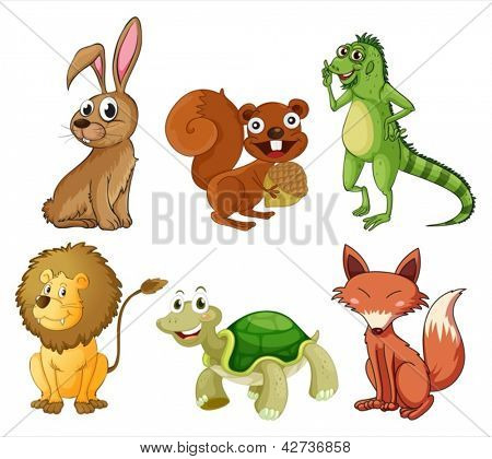 Illustration of the four-legged animals on a white background