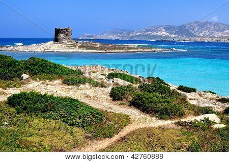 Vista de la playa de La Pelosa, Stintino, Cerdeña, Italia