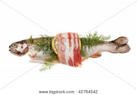 Trout And Pancetta