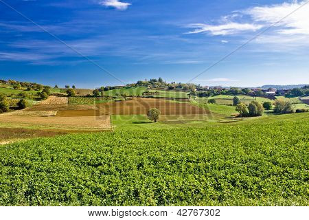 Beautiful Green Nature Under Blue Sky
