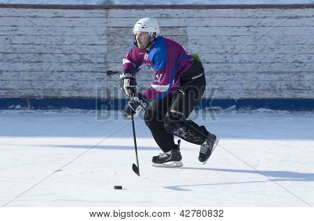 Sunny hockey player