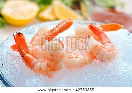 Tiger Shrimp on Ice
