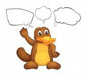 picture of platypus  - Illustration of a platypus on a white background - JPG
