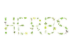 picture of feverfew  - Herb selection of leaf sprigs forming the word herbs over white background - JPG