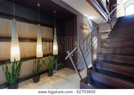 Corridor, Plants And Staircase