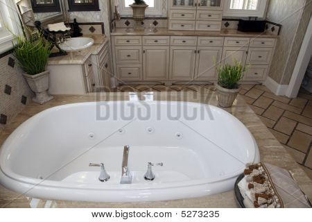 Designer Bathroom
