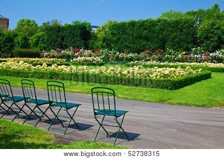 Chairs And Flowers In Volksgarten