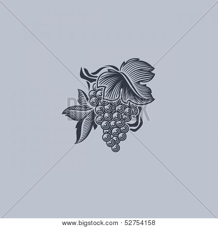Grape With Leaf. Element For Design. Vector Illustration