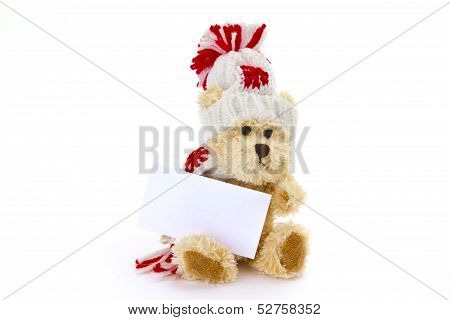 Teddybear With Blank Business Card