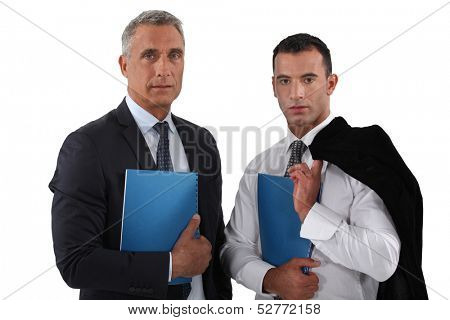 A team of business professionals