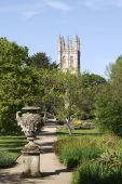 Magdalen College From Botanical Gardens. Oxford. England poster