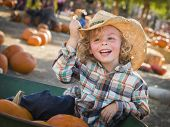 stock photo of riding-crop  - Adorable Little Boy Wearing Cowboy Hat at Pumpkin Patch Farm - JPG