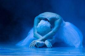 picture of tchaikovsky  - Classic balet Swan lake by Pyotr Ilyich Tchaikovsky  - JPG