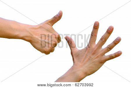 Thumb Up, Five Fingers, Open Hands, Fist