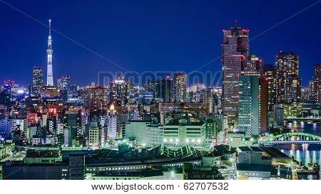 Tokyo, Japan City Skyline with Tokyo Skytree