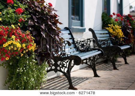 Two Empty Benches Surrounded By Flowers