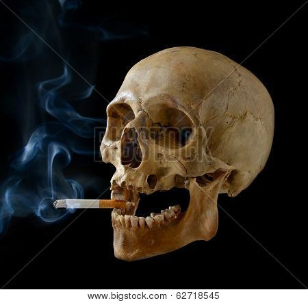 Skull With A Cigarette.