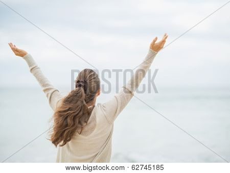 Young Woman On Cold Beach Rejoicing Success. Rear View