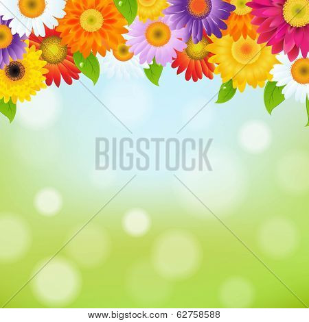 Color Gerbers Flower Frame