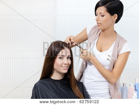 Hairdresser cuts hair of woman in hairdresser's. Concept of fashion and beauty