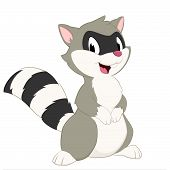 pic of raccoon  - Cartoon raccoon - JPG