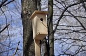 Birdhouse In The Park One Day In April.
