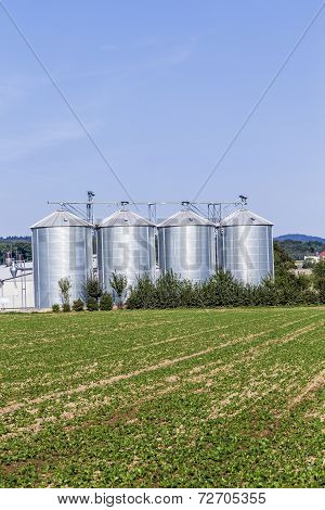 Four Silver Silos In Field
