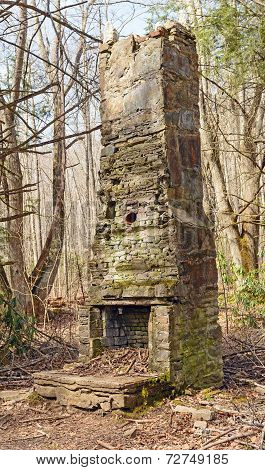 Ruins Of An Old Chimney In The Wilderness